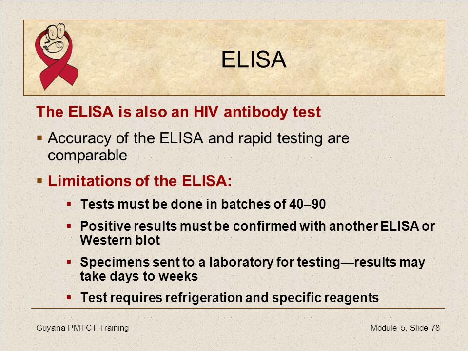 ELISA The ELISA is also an HIV antibody test