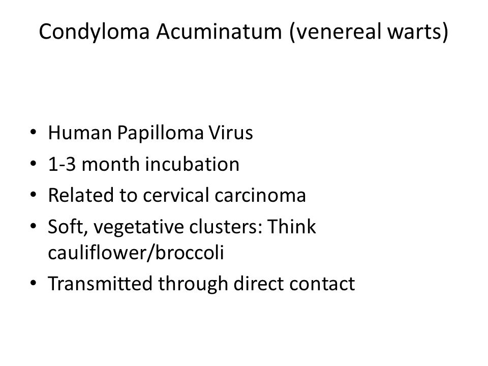 Condyloma Acuminatum (venereal warts)
