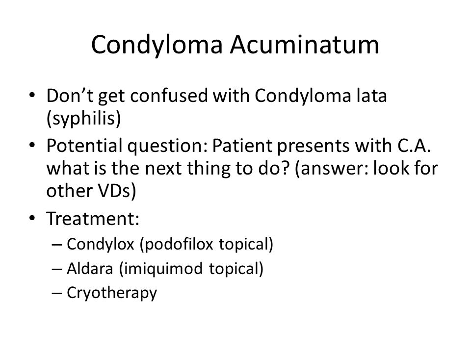 Condyloma Acuminatum Don't get confused with Condyloma lata (syphilis)