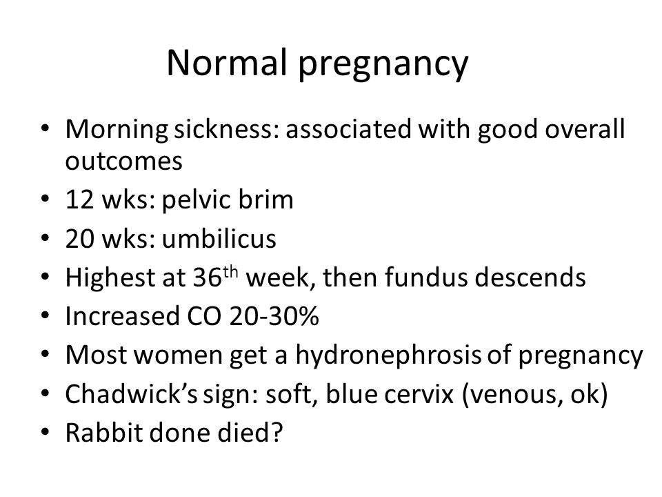 Normal pregnancy Morning sickness: associated with good overall outcomes. 12 wks: pelvic brim. 20 wks: umbilicus.
