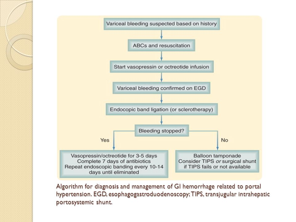 Algorithm for diagnosis and management of GI hemorrhage related to portal hypertension.
