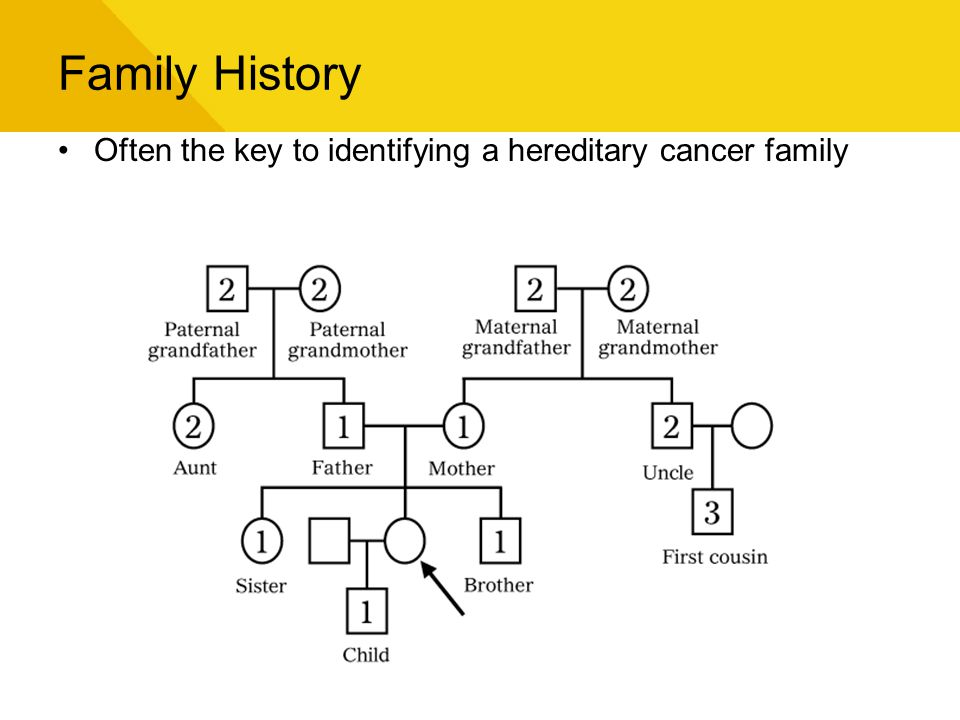 Family History Often the key to identifying a hereditary cancer family