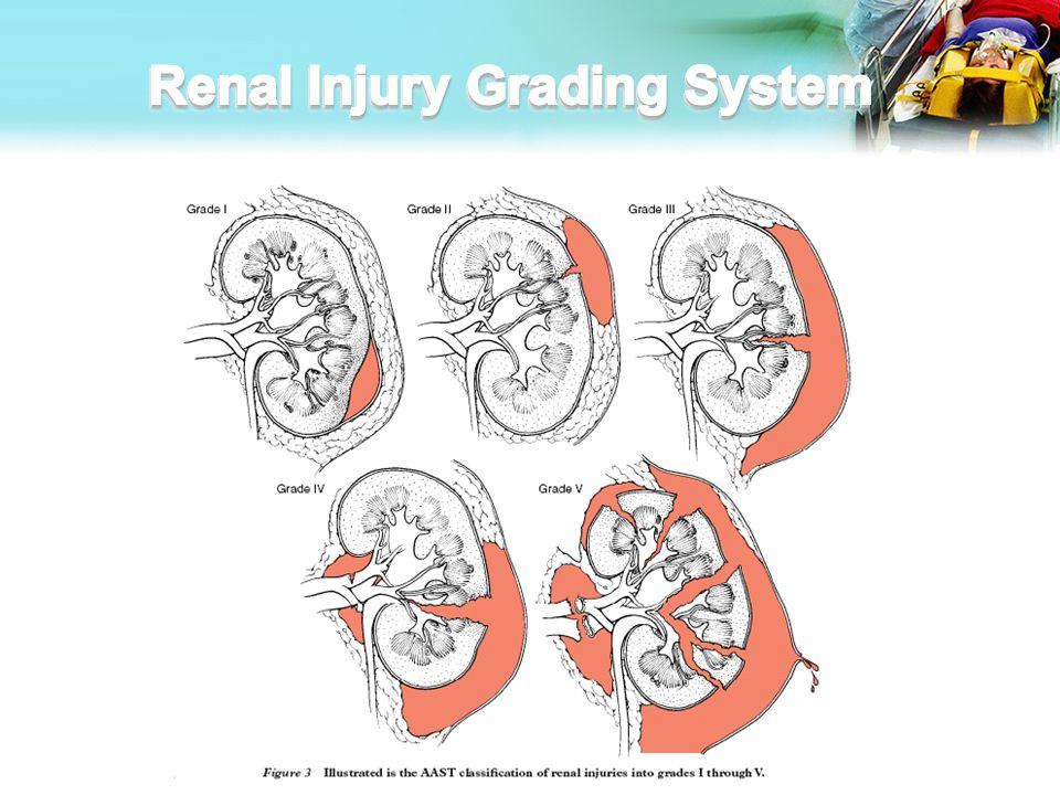Renal Injury Grading System