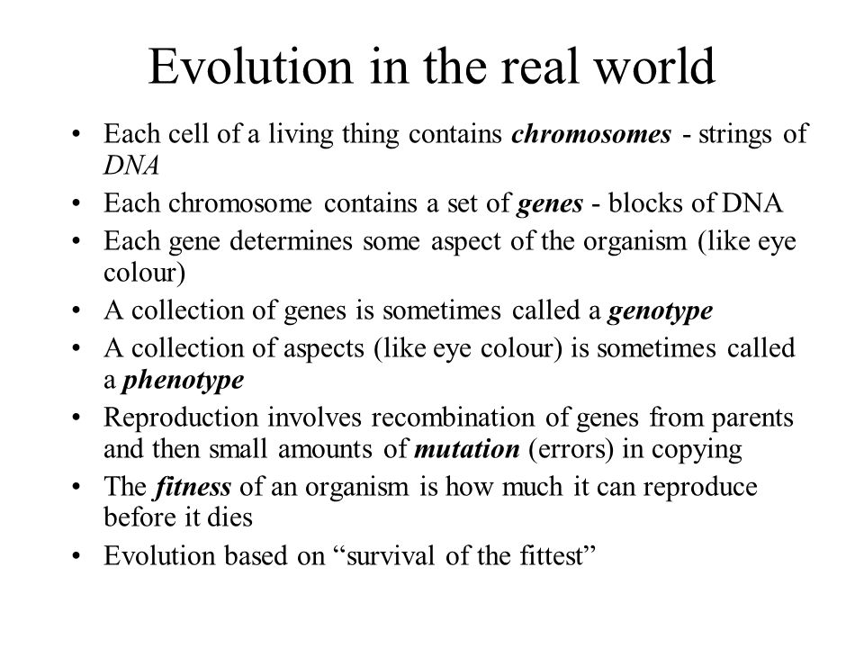 Evolution in the real world