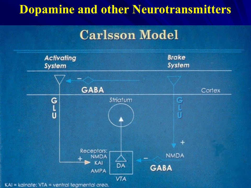 Dopamine and other Neurotransmitters