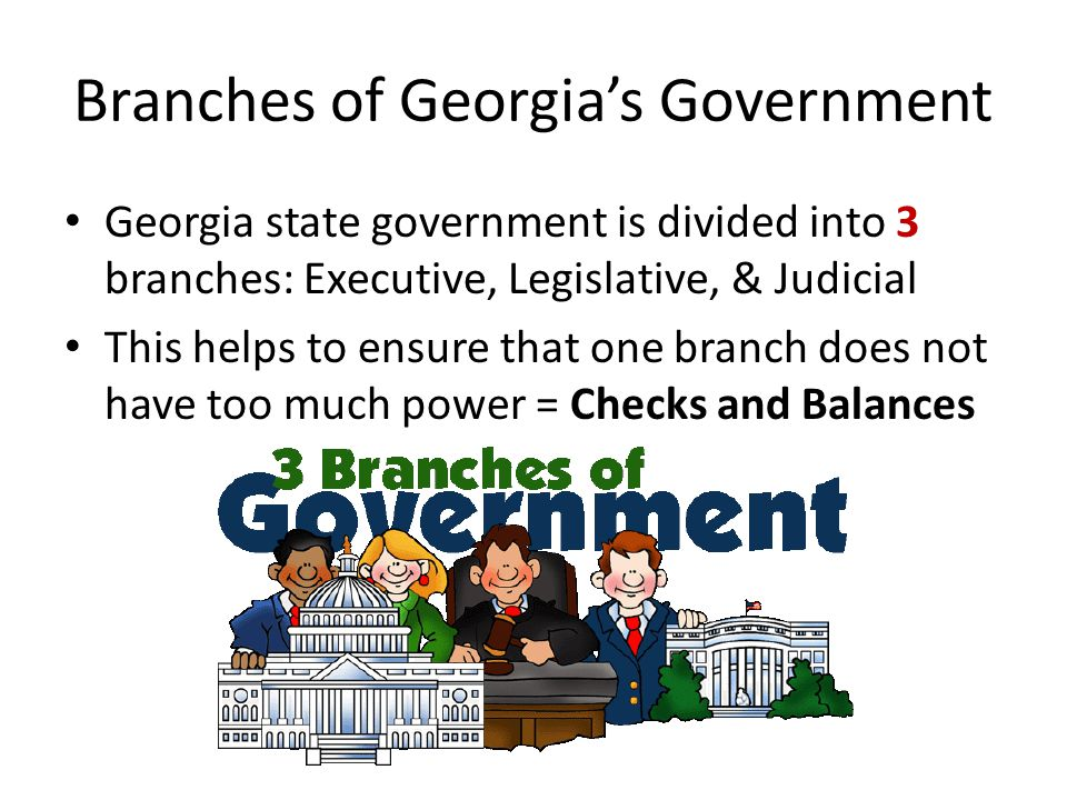 Branches of Georgia's Government