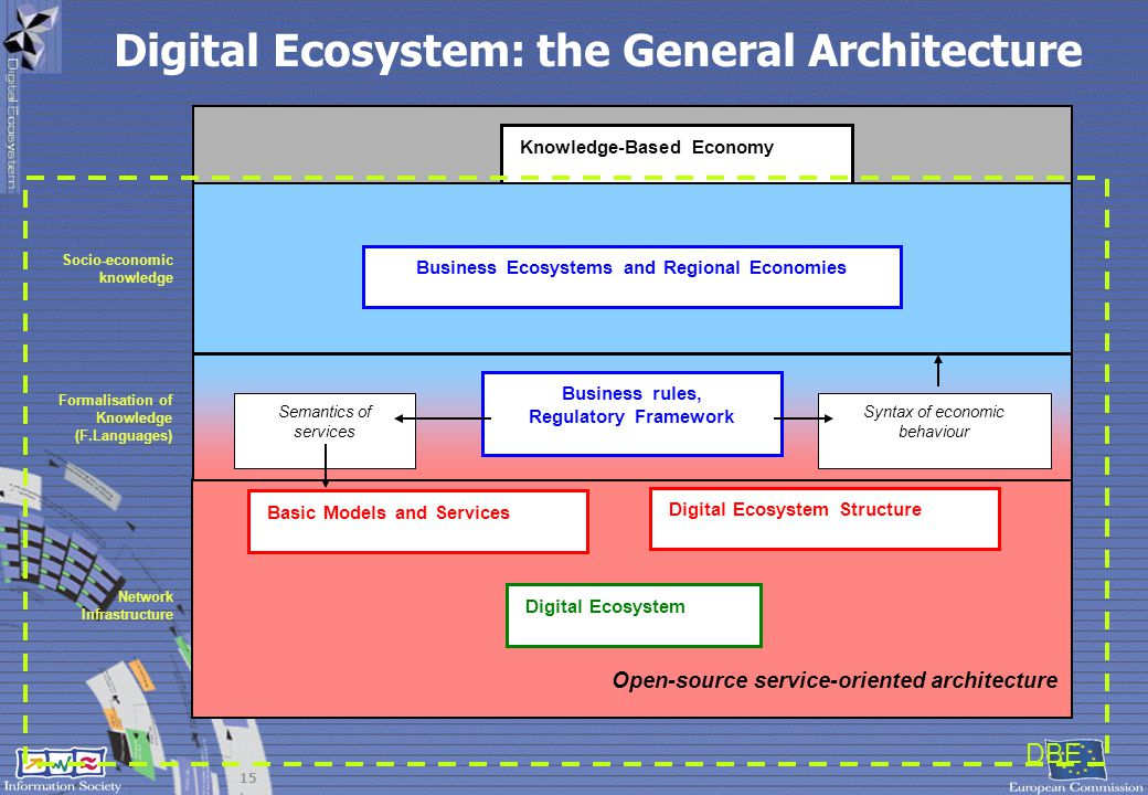Digital Ecosystem: the General Architecture