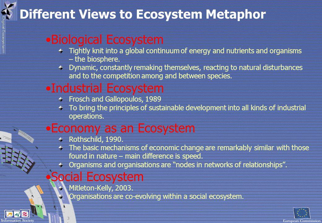Different Views to Ecosystem Metaphor
