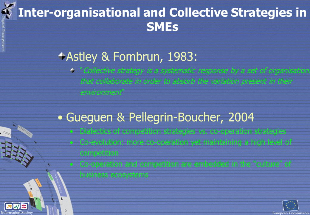 Inter-organisational and Collective Strategies in SMEs