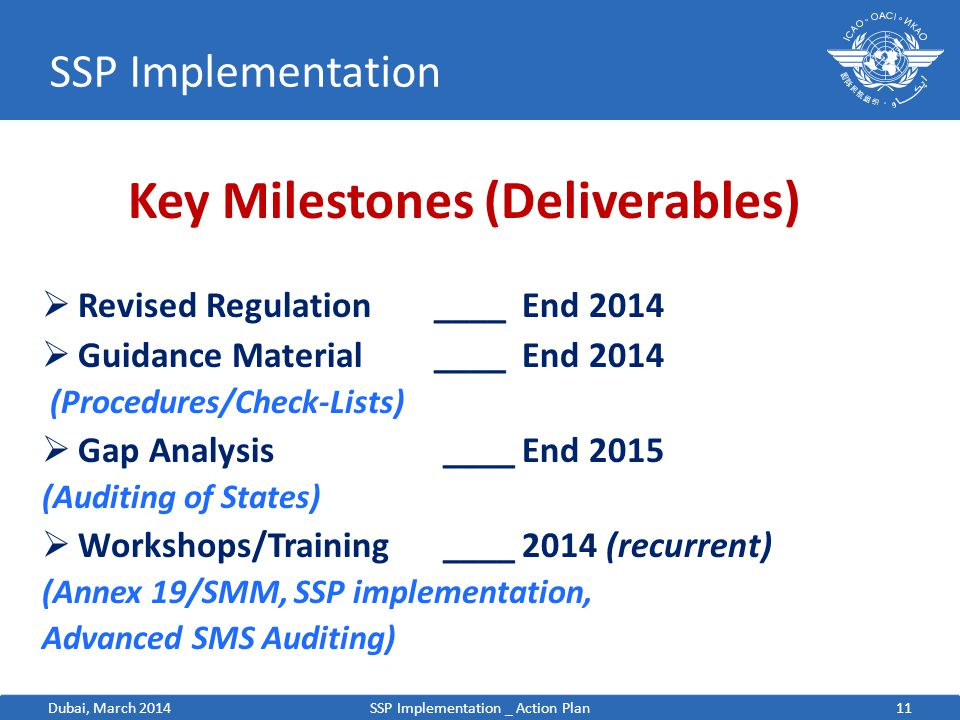 Key Milestones (Deliverables)