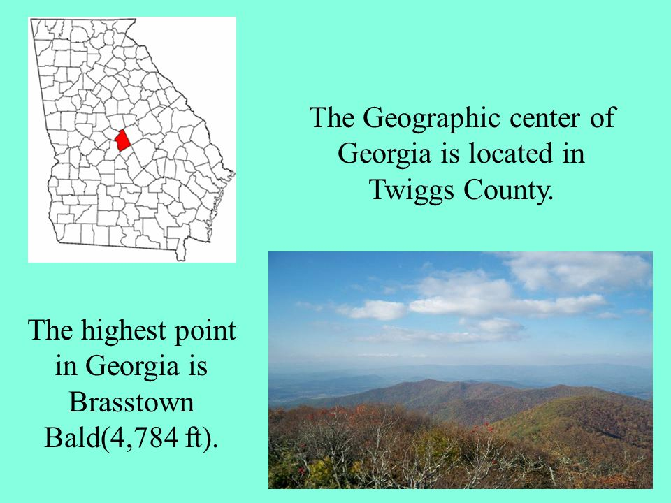 The Geographic center of Georgia is located in Twiggs County.