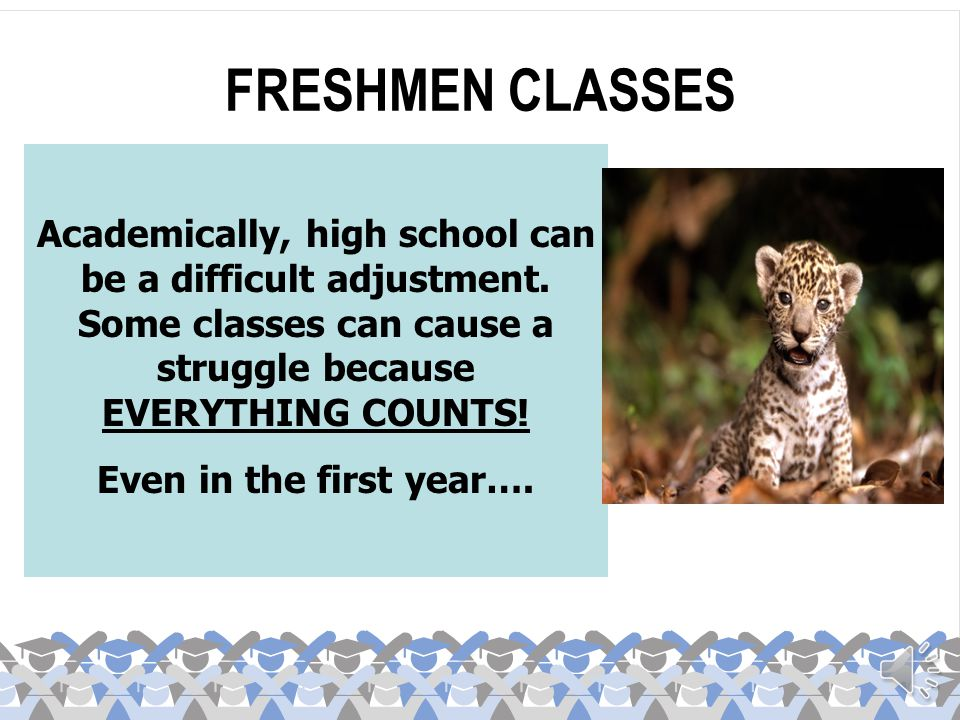 FRESHMEN CLASSES Academically, high school can be a difficult adjustment. Some classes can cause a struggle because EVERYTHING COUNTS!