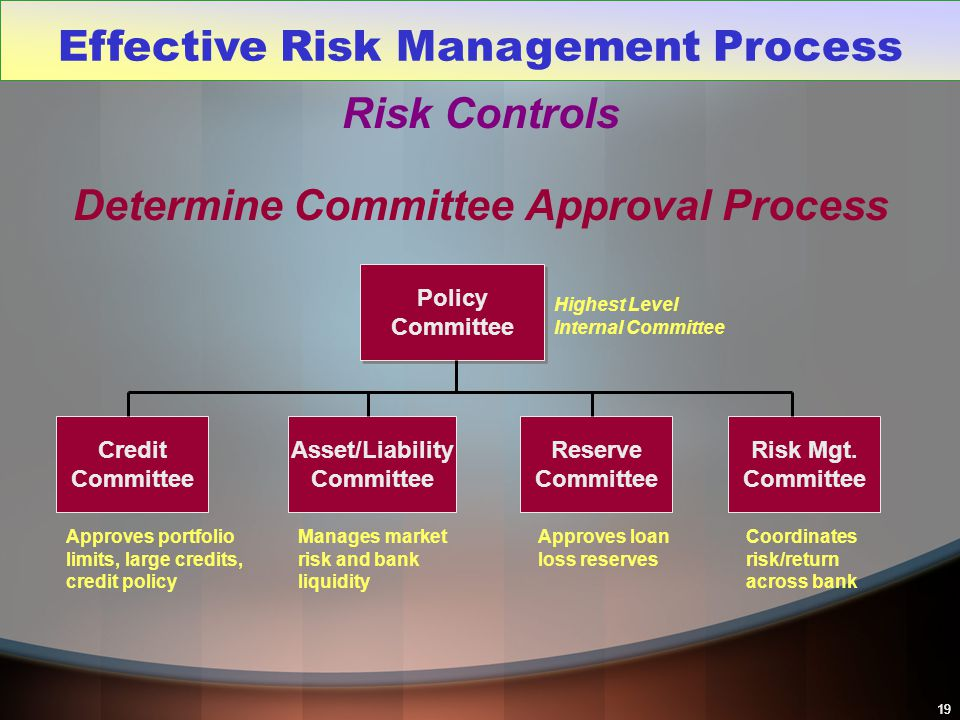 Effective Risk Management Process Determine Committee Approval Process