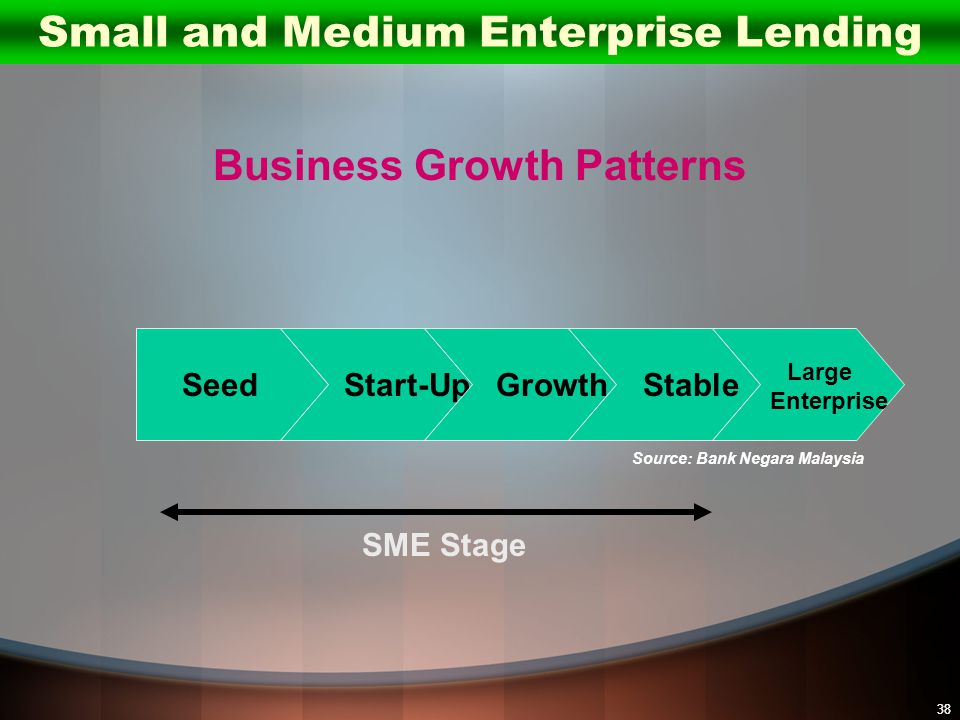Small and Medium Enterprise Lending