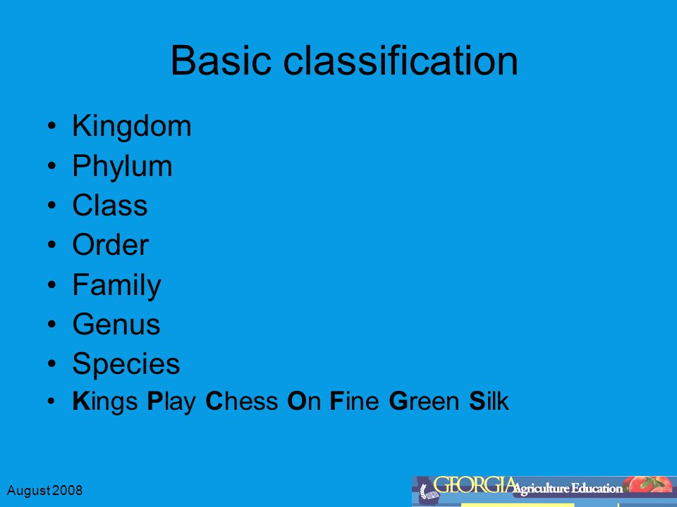 Basic classification Kingdom Phylum Class Order Family Genus Species
