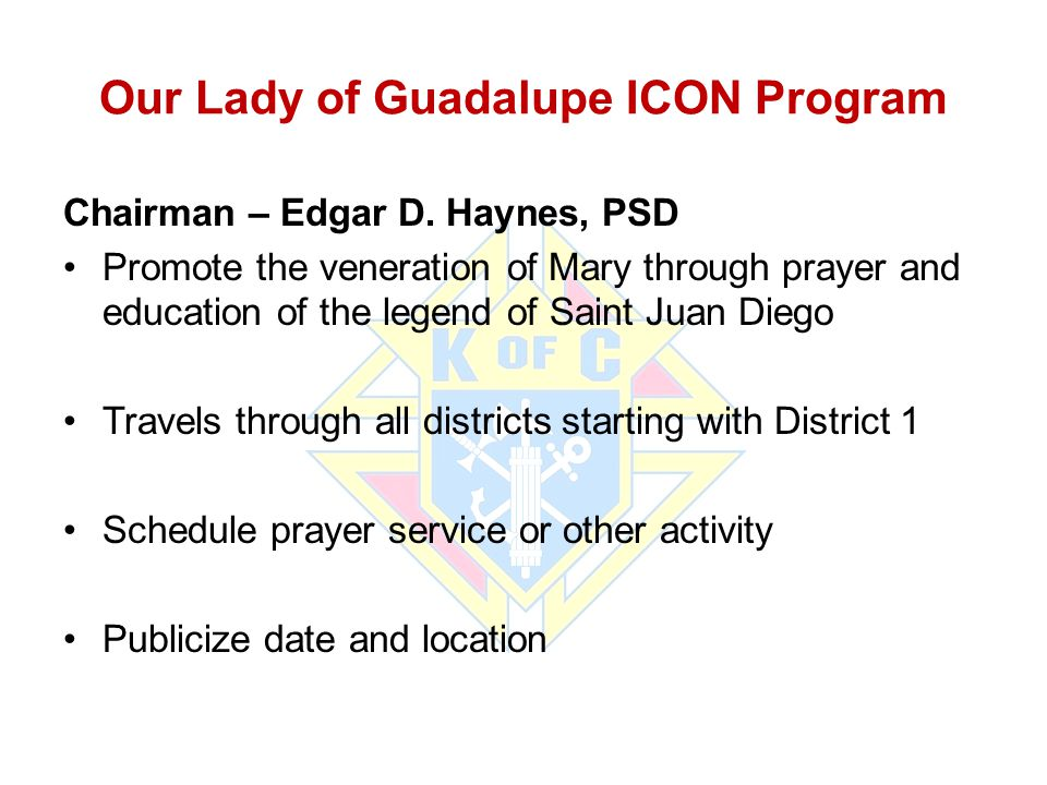 Our Lady of Guadalupe ICON Program