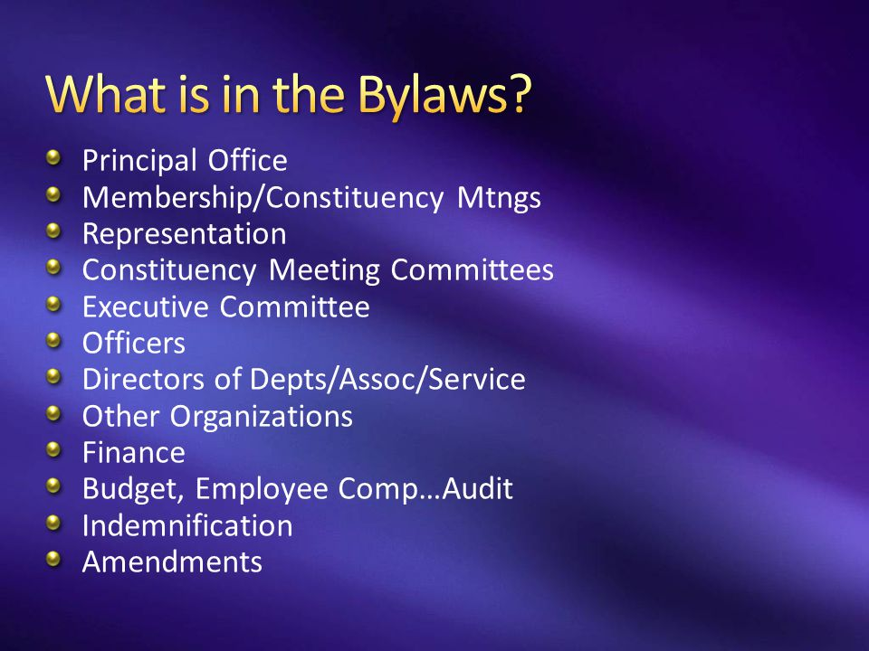 What is in the Bylaws Principal Office Membership/Constituency Mtngs