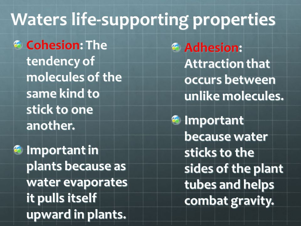 Waters life-supporting properties