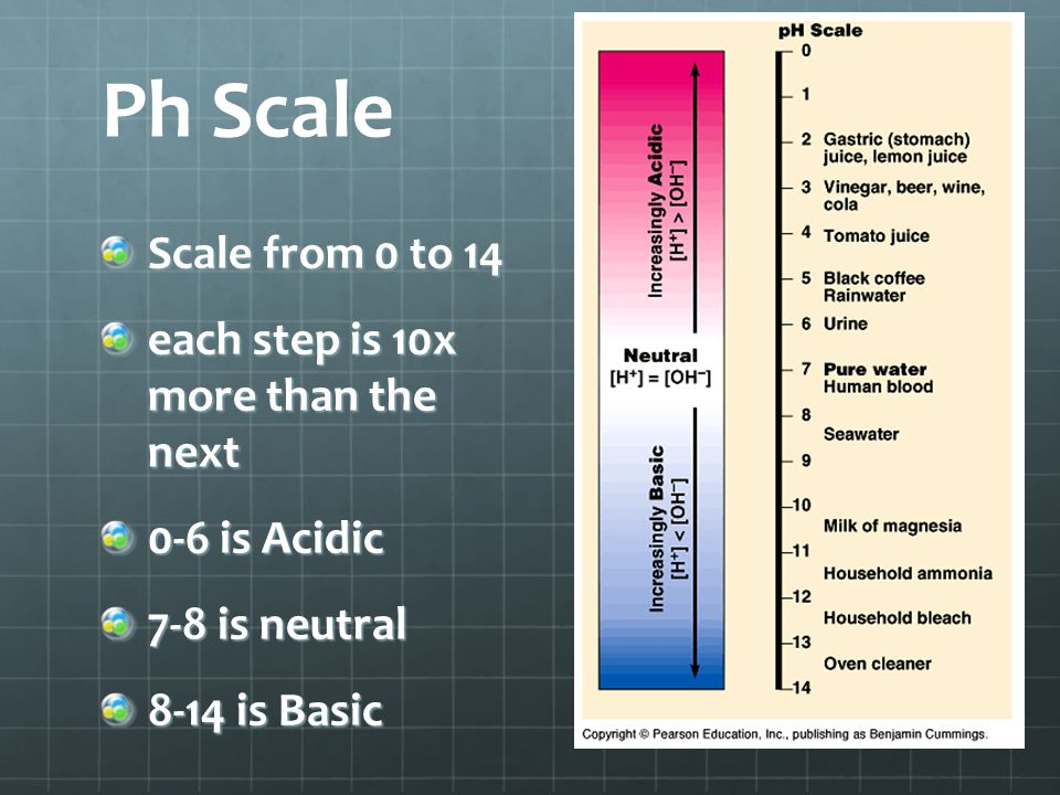 Ph Scale Scale from 0 to 14 each step is 10x more than the next