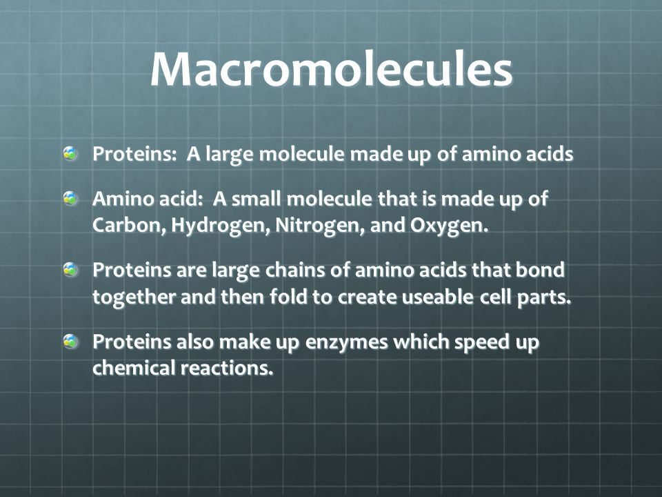Macromolecules Proteins: A large molecule made up of amino acids