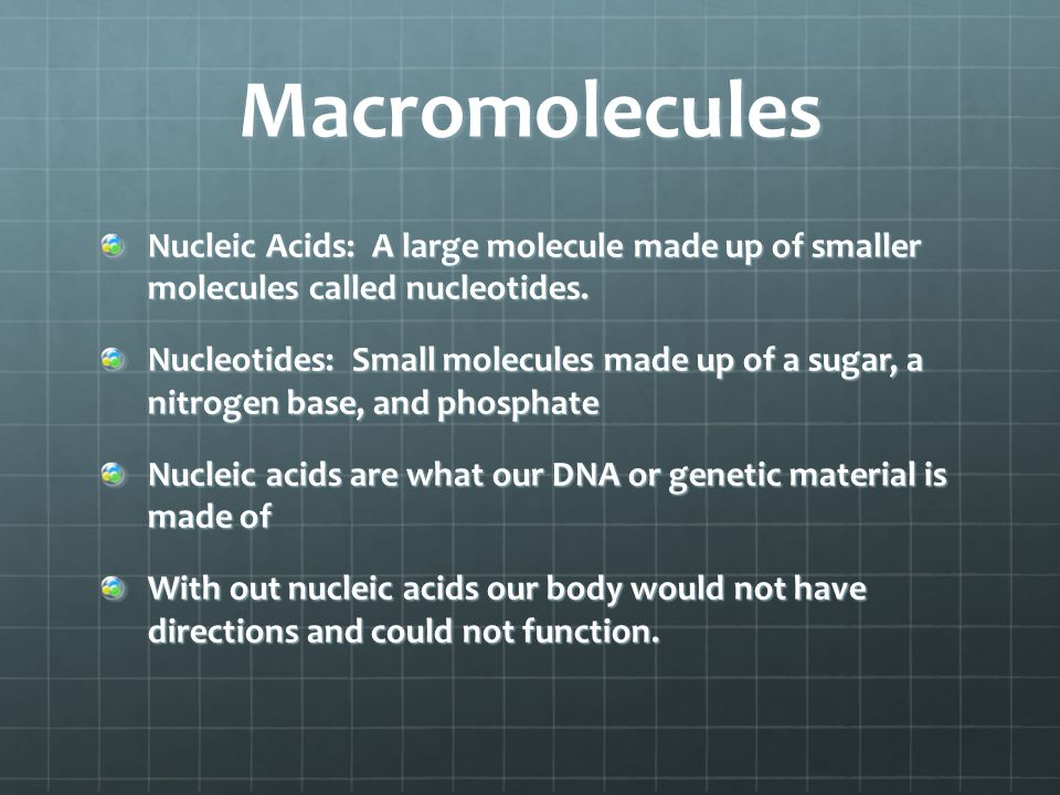 Macromolecules Nucleic Acids: A large molecule made up of smaller molecules called nucleotides.