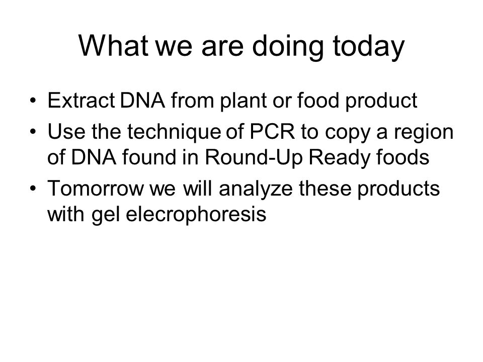 What we are doing today Extract DNA from plant or food product