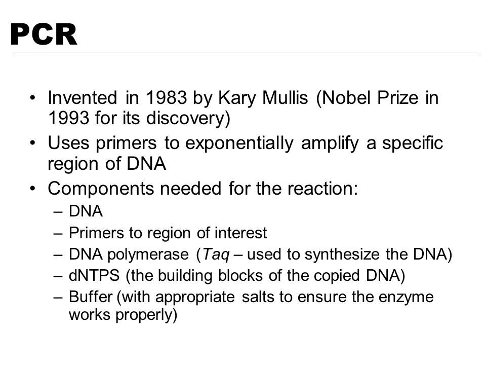 PCR Invented in 1983 by Kary Mullis (Nobel Prize in 1993 for its discovery) Uses primers to exponentially amplify a specific region of DNA.
