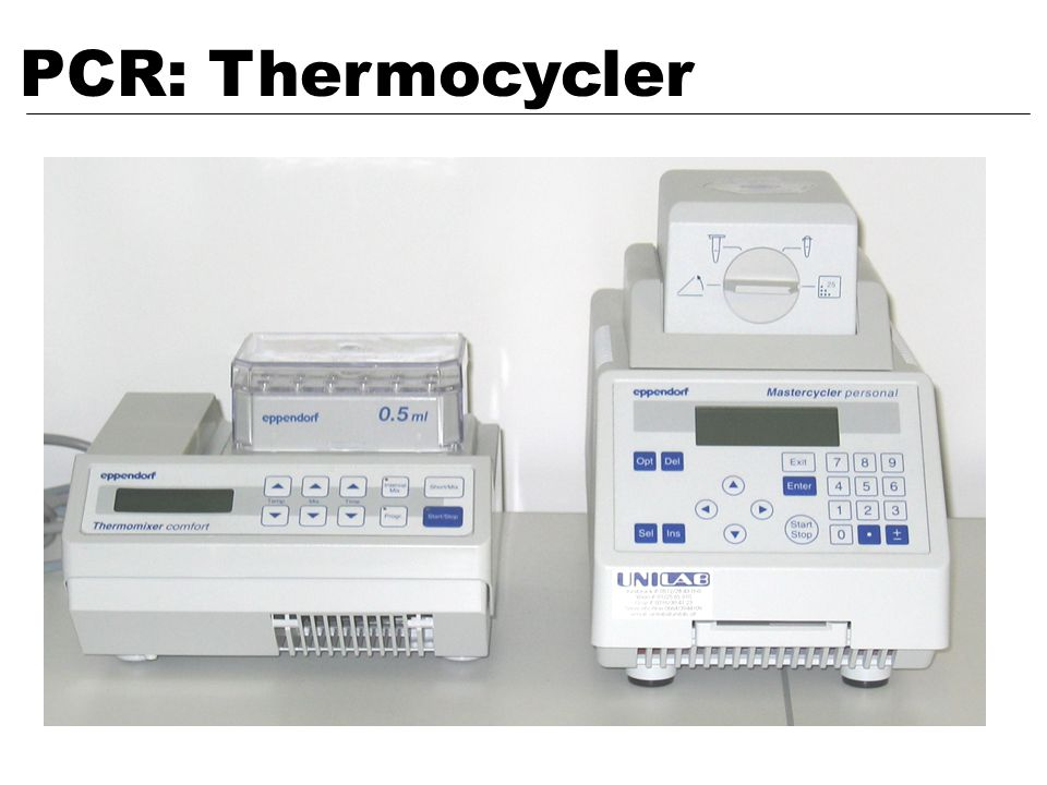 PCR: Thermocycler