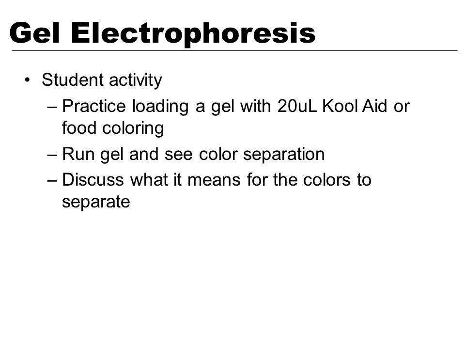 Gel Electrophoresis Student activity