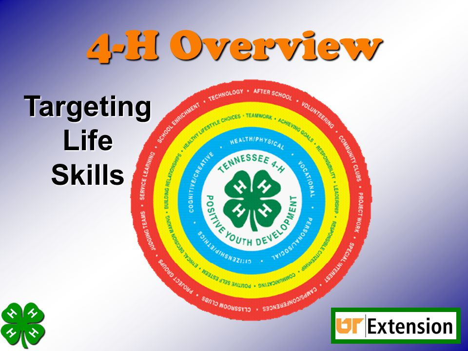 4-H Overview Targeting Life Skills