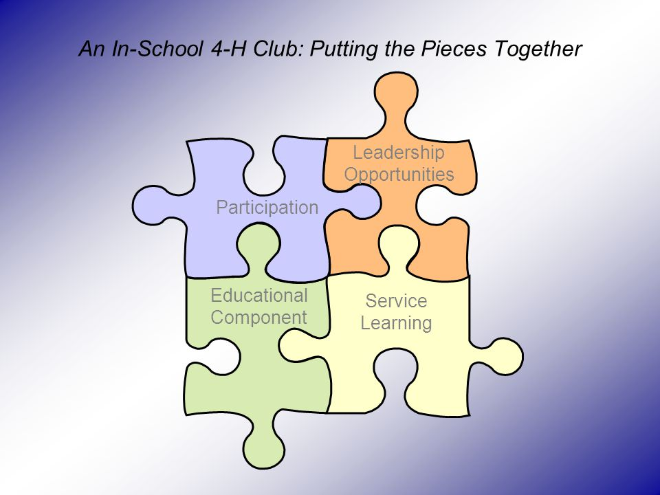 An In-School 4-H Club: Putting the Pieces Together