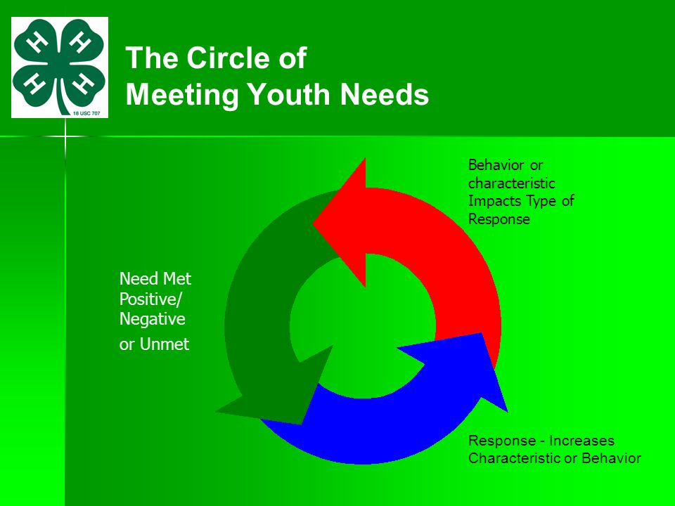The Circle of Meeting Youth Needs