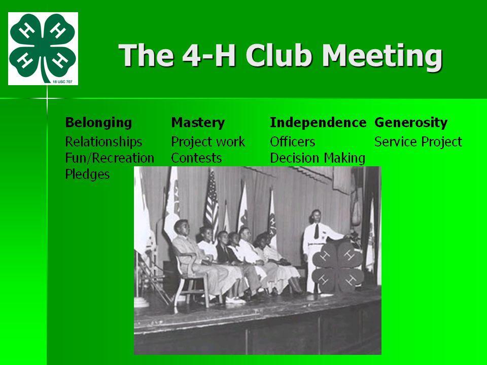 The 4-H Club Meeting