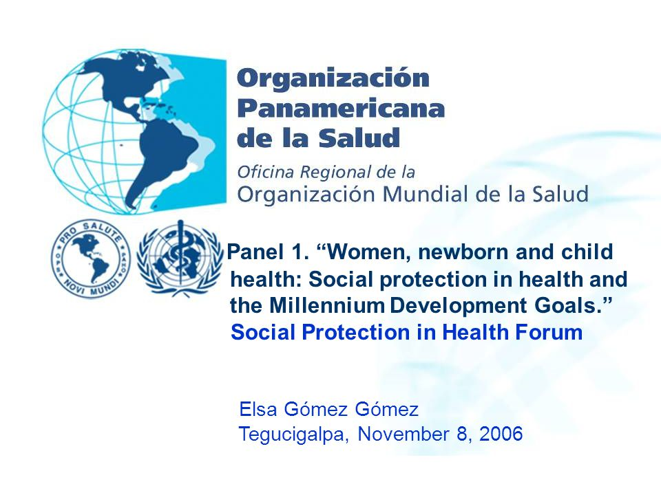 Panel 1. Women, newborn and child health: Social protection in health and the Millennium Development Goals.