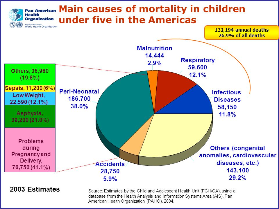 Main causes of mortality in children under five in the Americas