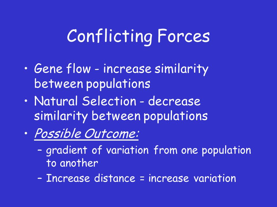 Conflicting Forces Gene flow - increase similarity between populations