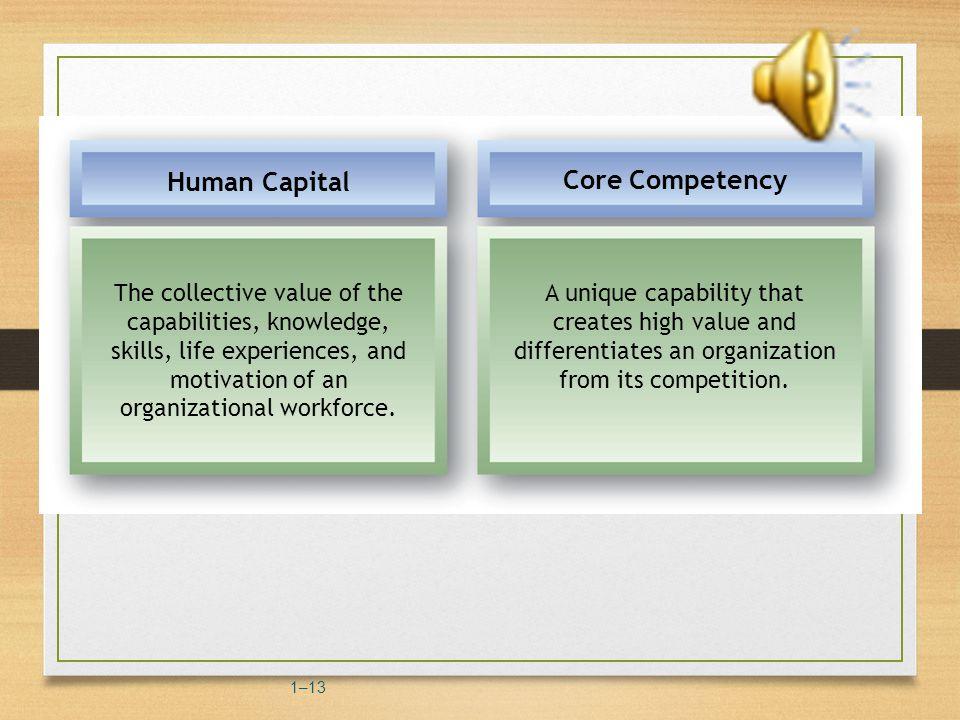 Human Capital in Organizations