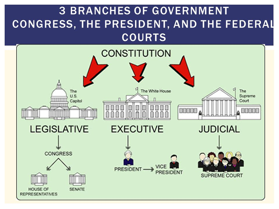 3 Branches of Government Congress, the President, and the Federal Courts