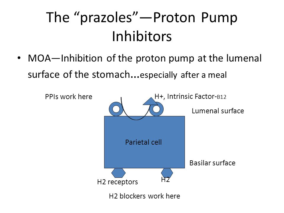 The prazoles —Proton Pump Inhibitors