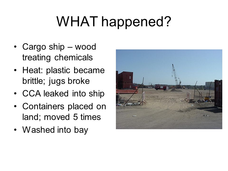 WHAT happened Cargo ship – wood treating chemicals
