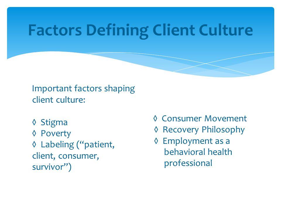 Factors Defining Client Culture