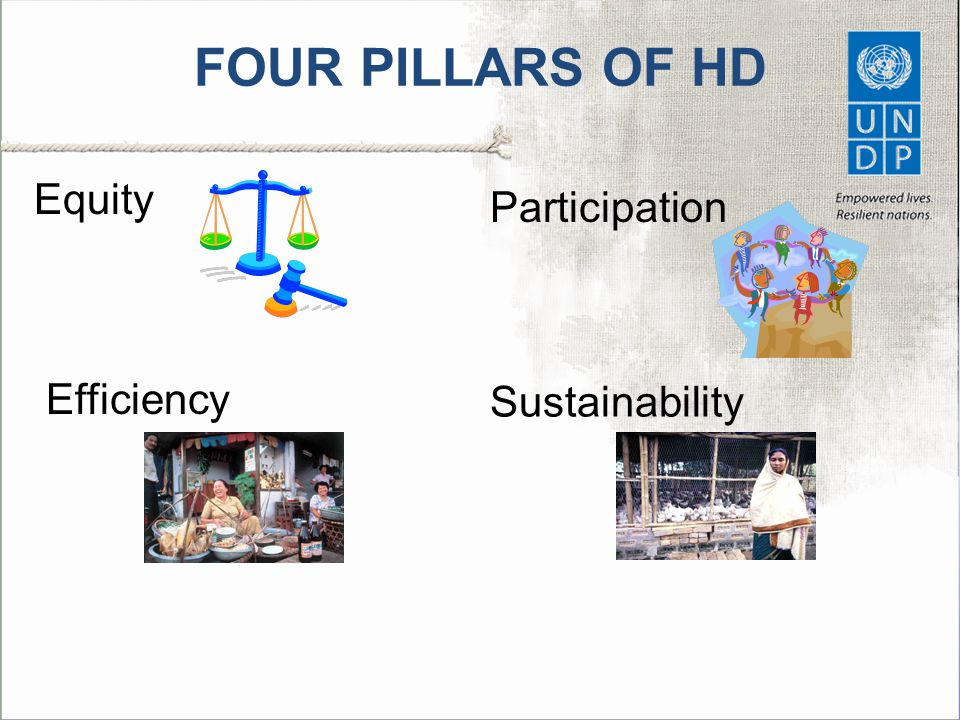 FOUR PILLARS OF HD Equity Participation Efficiency Sustainability