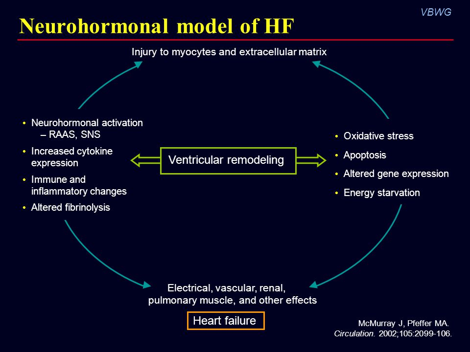 Neurohormonal model of HF
