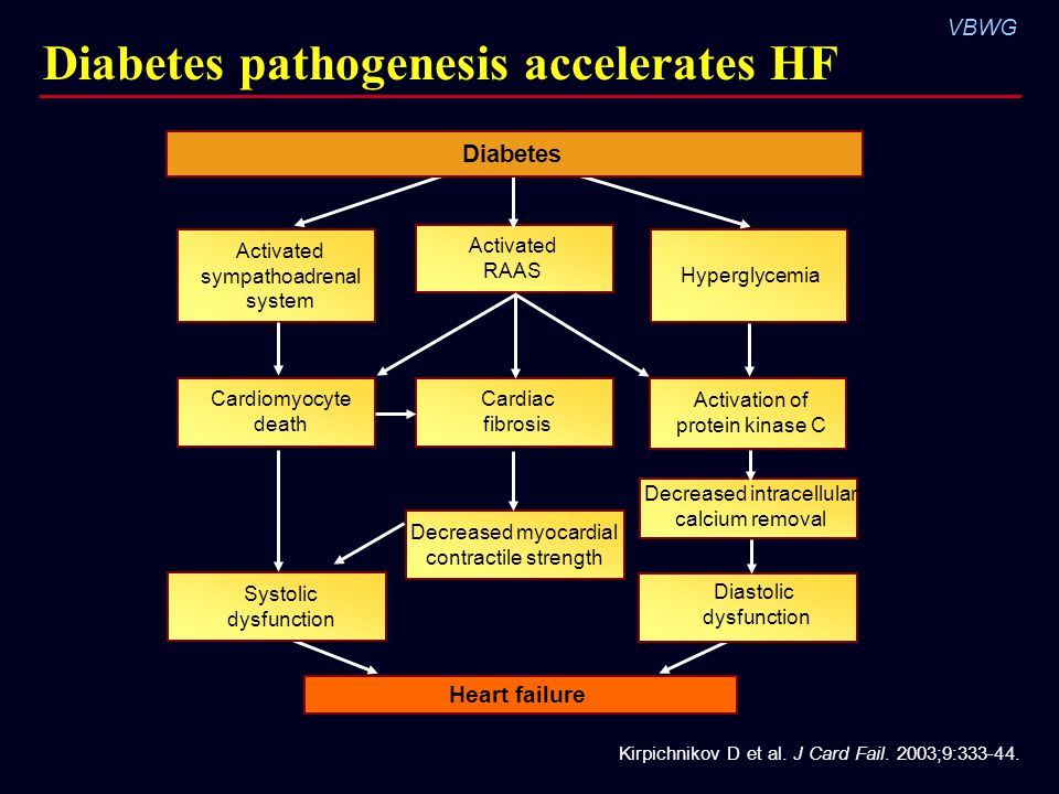 Diabetes pathogenesis accelerates HF