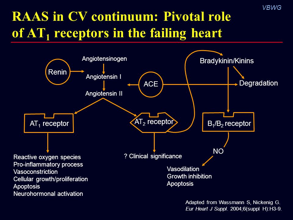 RAAS in CV continuum: Pivotal role of AT1 receptors in the failing heart