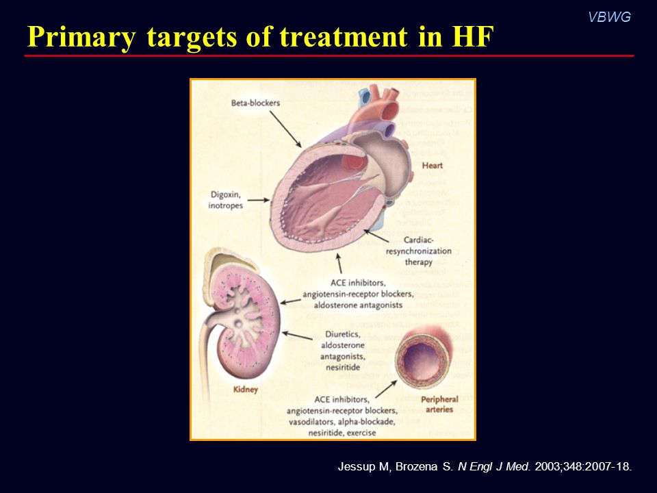 Primary targets of treatment in HF