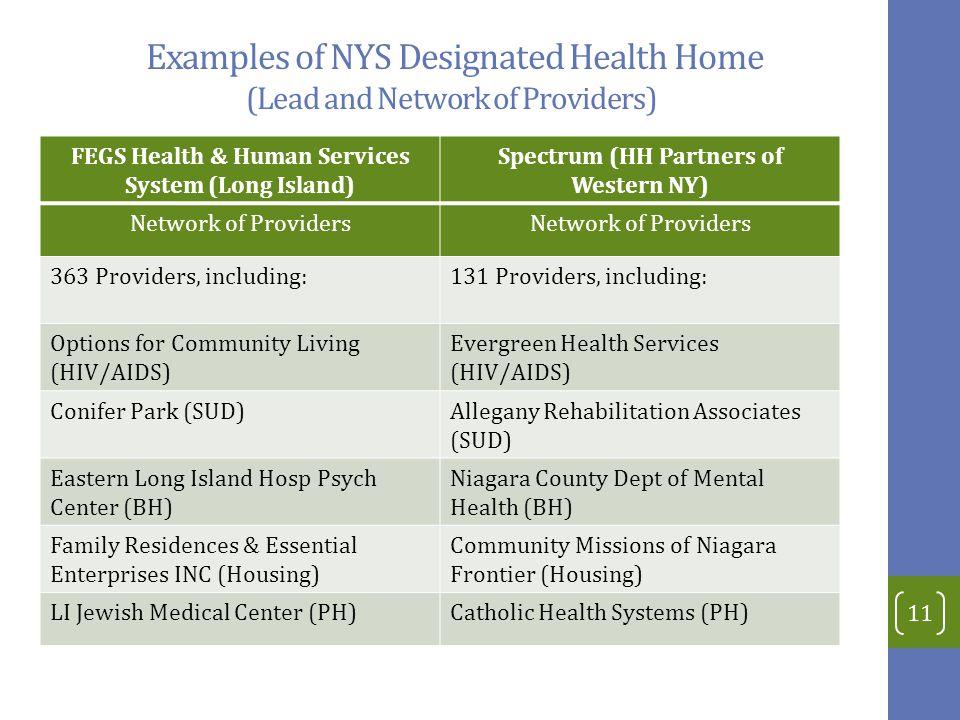 Examples of NYS Designated Health Home (Lead and Network of Providers)