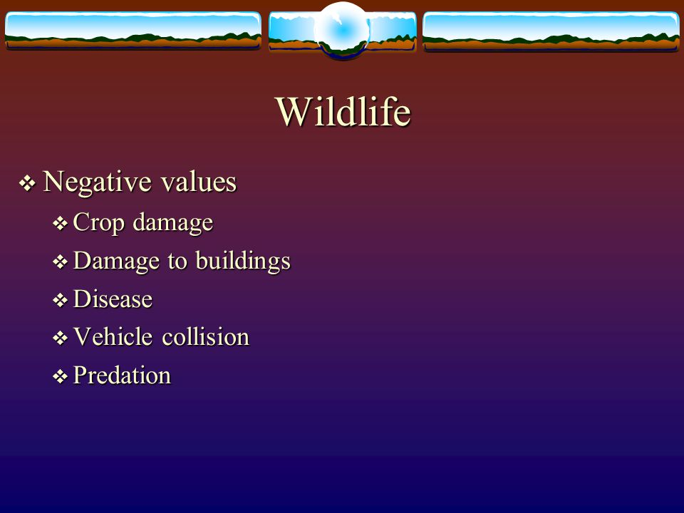 Wildlife Negative values Crop damage Damage to buildings Disease