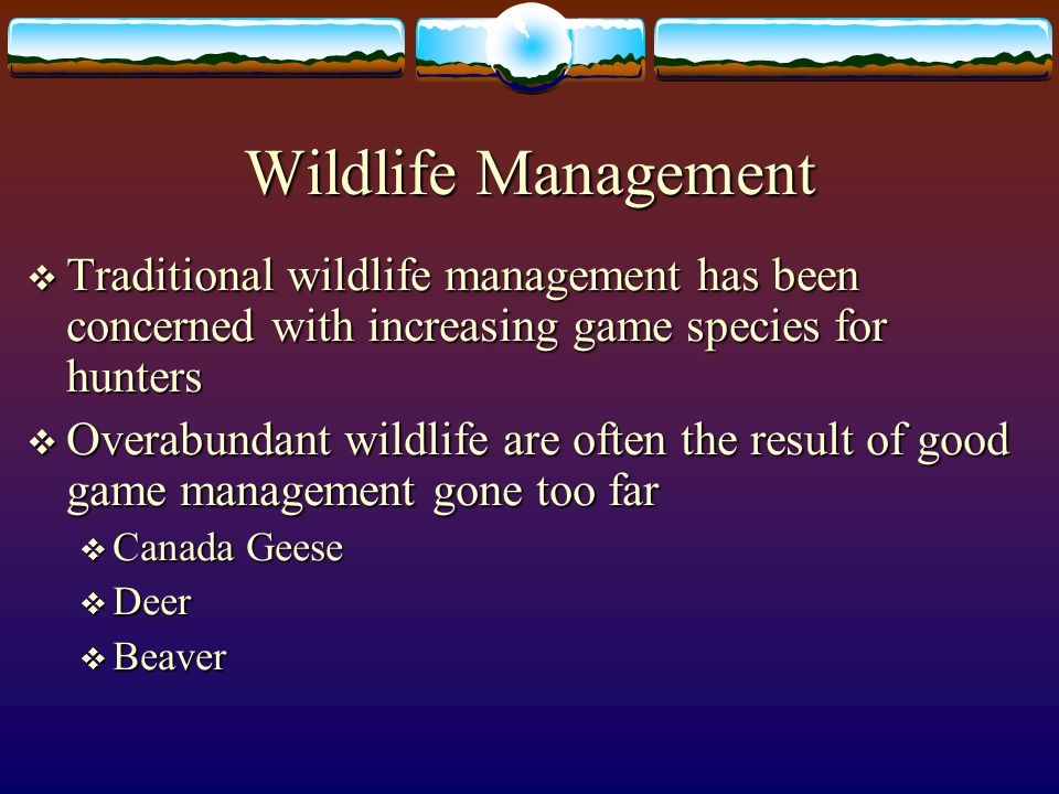 Wildlife Management Traditional wildlife management has been concerned with increasing game species for hunters.