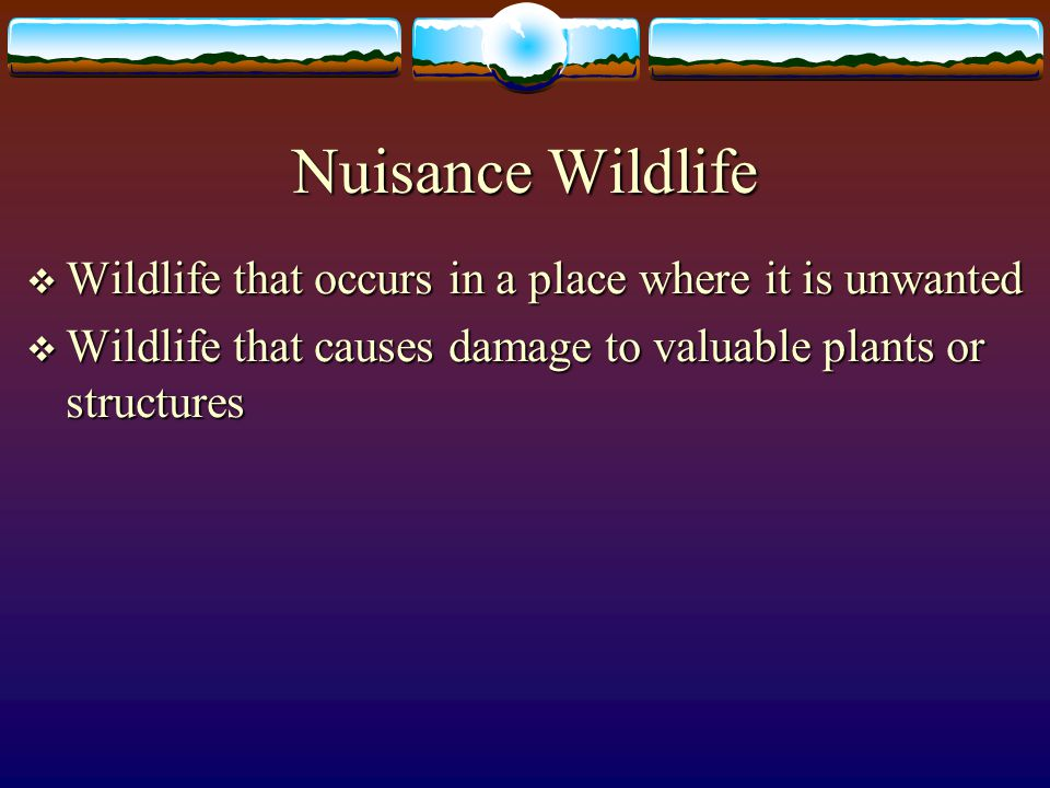 Nuisance Wildlife Wildlife that occurs in a place where it is unwanted